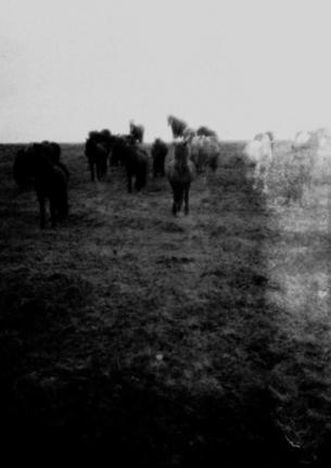 | EN TOURNAGE |  Un film de Lucile Mercier Fiction Moyen métrage