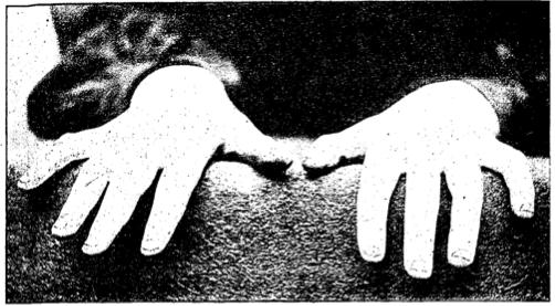 mains bruno reidal