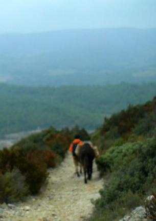 | EN DÉVELOPPEMENT |  Un film de Jean-Baptiste Alazard Documentaire Moyen métrage