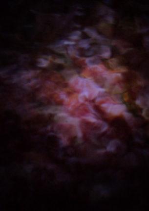 | EN DÉVELOPPEMENT |  Un film de Guillermo Quintero Long métrage documentaire En coproduction avec Romeo
